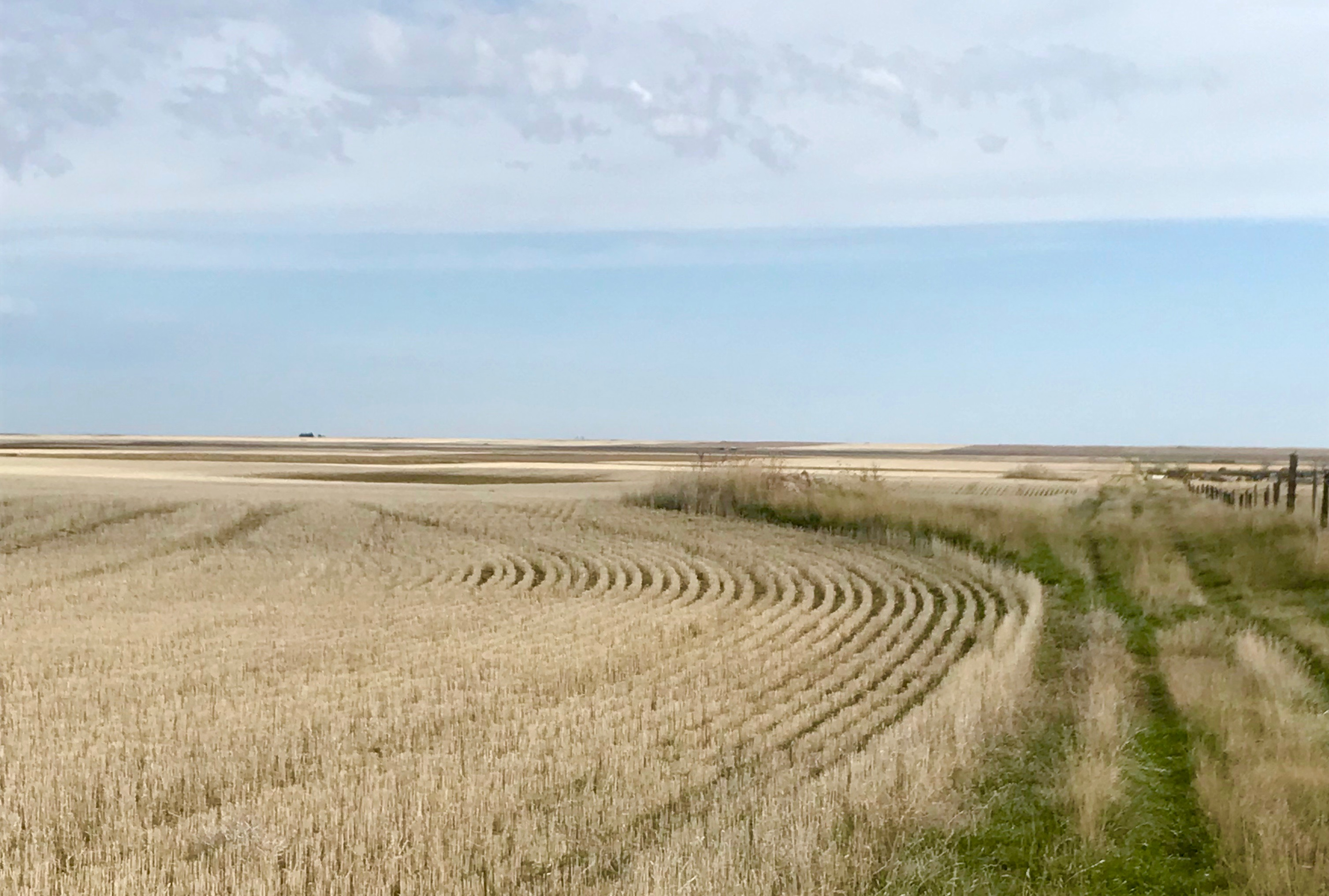 Parable of the Sower War on Rocks Wheat Field Montana